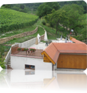 Vign_terrasse